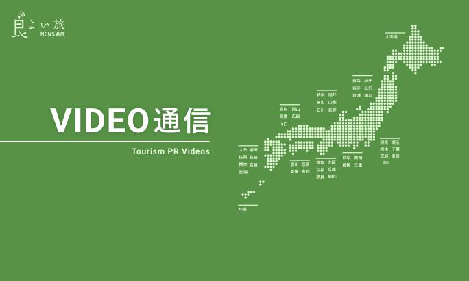 VIDEO通信