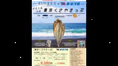東海汽船 東京くさやきっぷ